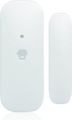 DS2300