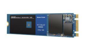 WDS250G1B0C