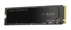 WDS500G3X0C
