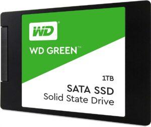 WDS100T2G0A